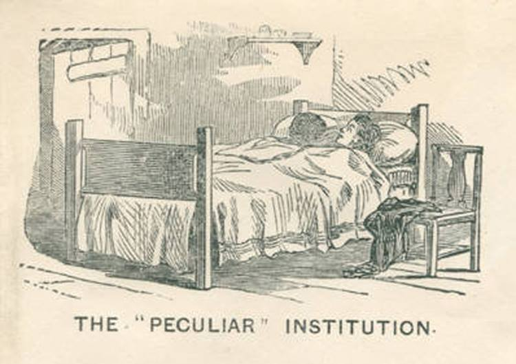 a history of the peculiar institution of slavery in the american south (our) peculiar institution was a euphemism for slavery and the social, economic and political ramifications that it bore and maintained the term became popularized when, in 1830, john c.