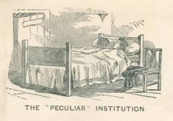 The Peculiar Institution-bed cartoon