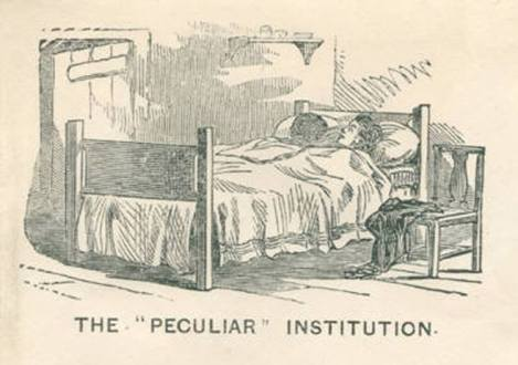 The Peculiar Institution-bed cartoon